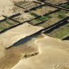 Quando la Terra diventa Deserto