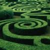 Ambiente: aiutare le imprese a orientarsi nel labirinto verde