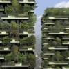 Verde verticale e sostenibilità ambientale