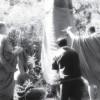Monaci Thailandesi impegnati a salvare gli alberi delle foreste
