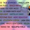 I risultati del Concorso europeo Juvenes Translatores 2014