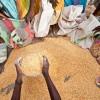 La Commissione europea promuove il dibattito su come nutrire il pianeta