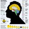 Effetti a lungo termine dell'uso di marijuana sul cervello