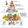 Troppa malnutrizione nel Bel Paese del buon cibo