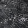 Effetti quantistici per reti biologiche, sociali e tecnologiche