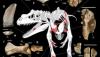La scoperta del Saltriovenator zanellai, il più antico dinosauro carnivoro, è un primato italiano