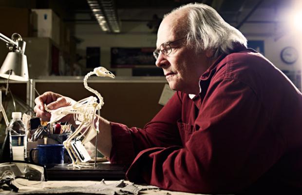 Jack Horner e il pollosauro