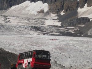 004 - Columbia Icefield