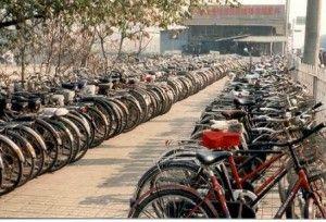 Shangai bici