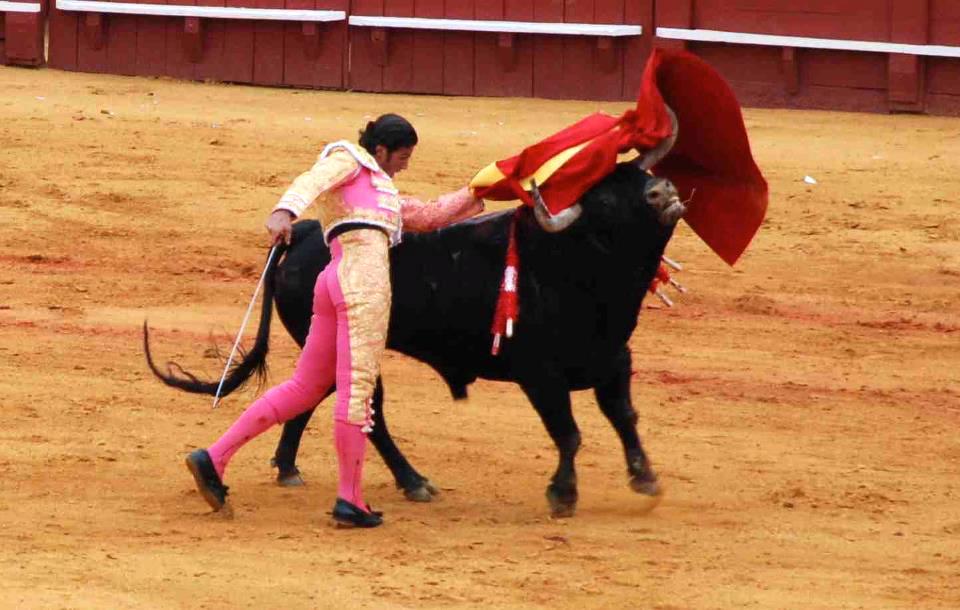 corrida_1