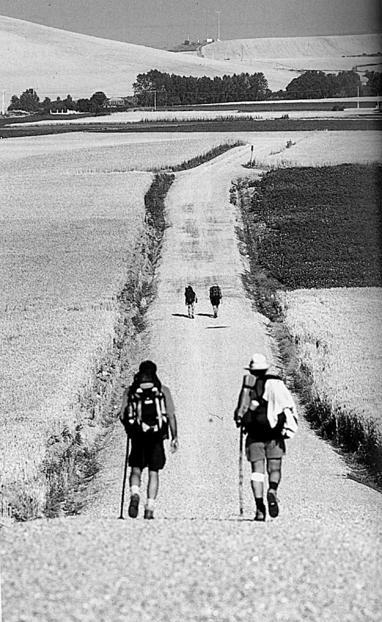Verso Santiago de Compostela.