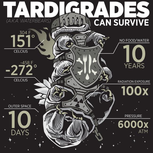 Tardigradi superman