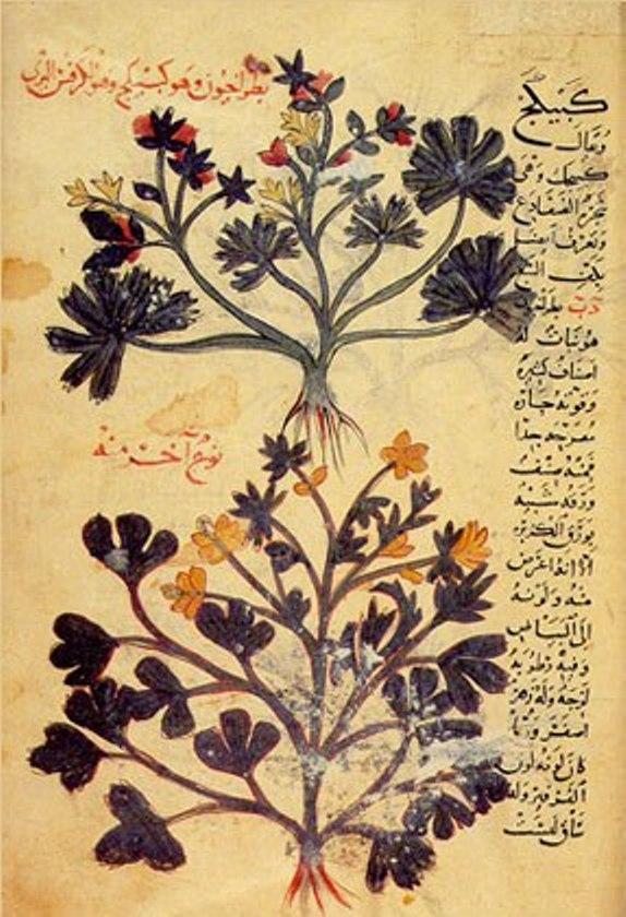 database_islamic