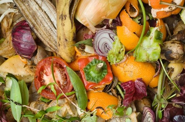 rifiuti organici