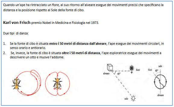 Screenshot_2021-04-11 IL MONDO DELLE API definitivo pptx - il-mondo-delle-api-definiti pdf(1)