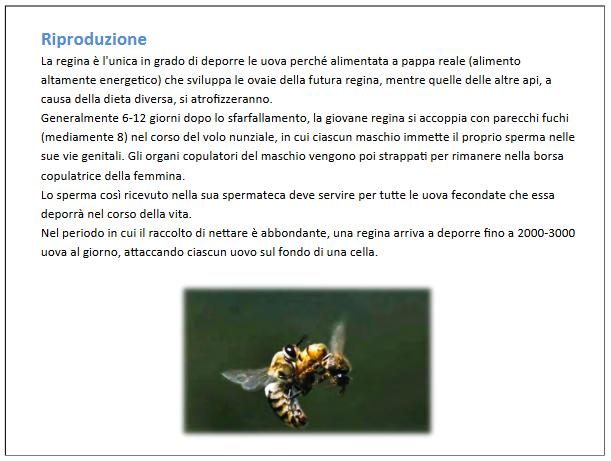 Screenshot_2021-04-11 IL MONDO DELLE API definitivo pptx - il-mondo-delle-api-definiti pdf(2)