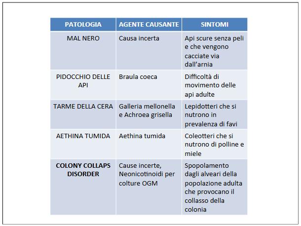 Screenshot_2021-04-11 IL MONDO DELLE API definitivo pptx - il-mondo-delle-api-definiti pdf(6)