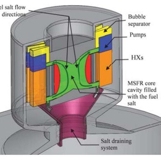 Molten Salt Fast Reactor
